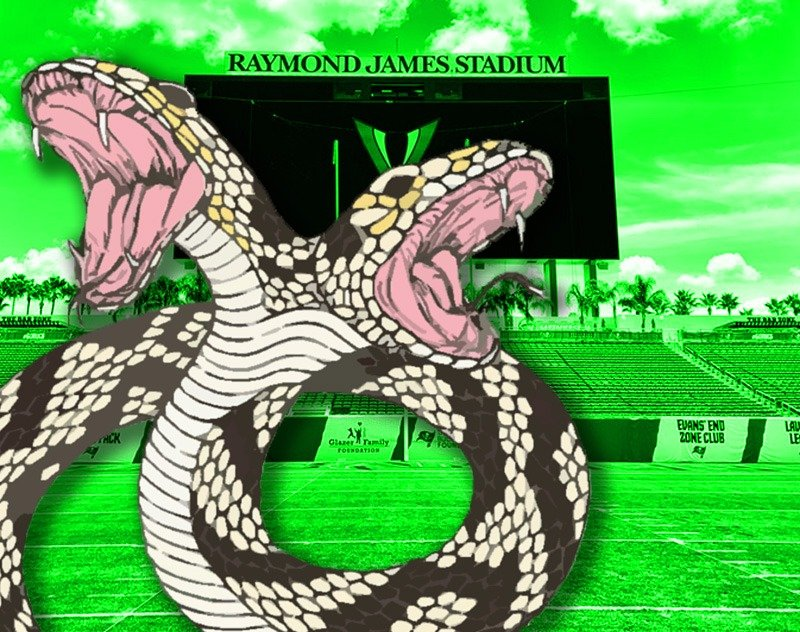 The Tampa Bay Vipers Two-Headed Snake System
