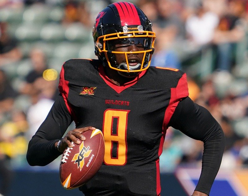 Los Angeles Wildcats QB Josh Johnson Works Out With 49ers