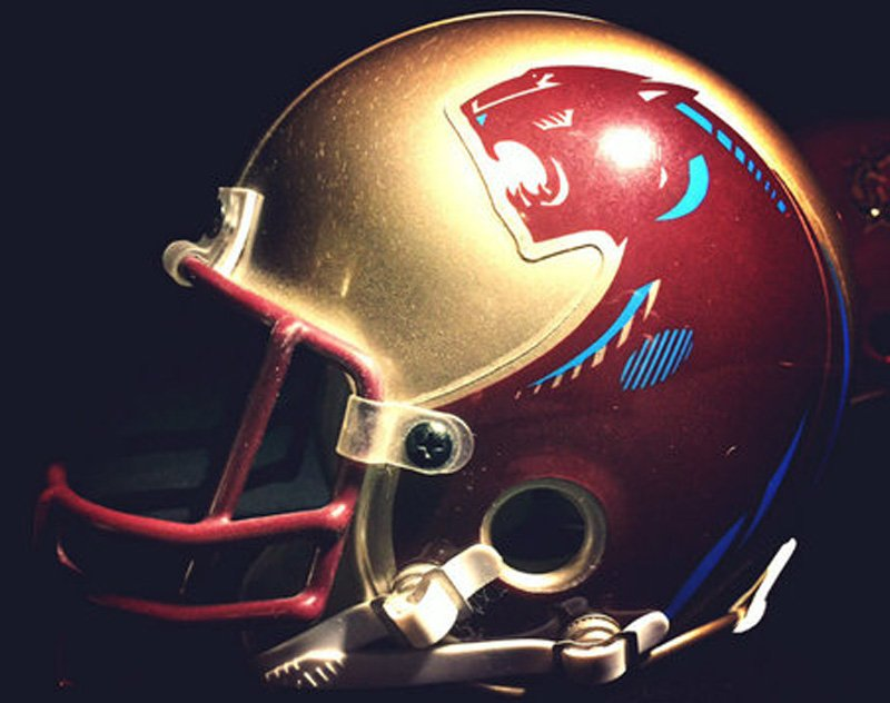 NFL Files Extension of Opposition to USFL's Michigan Panthers Trademark